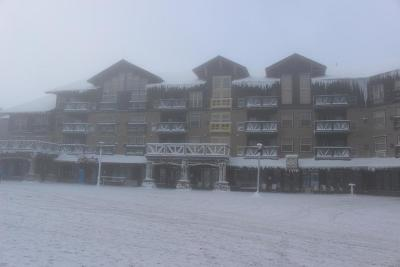 Snowshoe WV Condo/Townhouse For Sale: $64,900