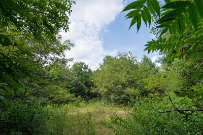 Residential Lots & Land For Sale: Lot 28 &29 Stonehouse Woods