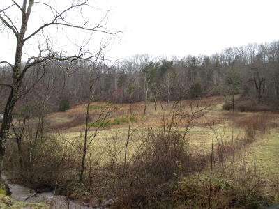Residential Lots & Land For Sale: Doe Hollow Road