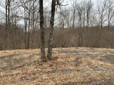 Residential Lots & Land For Sale: Radars Valley Road