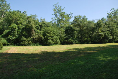Greenbrier County Residential Lots & Land For Sale: Lot #1 Jonah's Landing