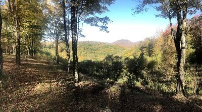 Residential Lots & Land For Sale: 1028 Summit Highland Trail