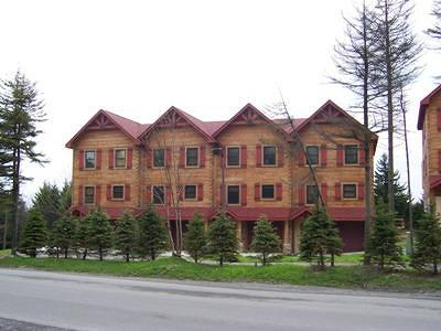Snowshoe WV Condo/Townhouse For Sale: $450,000