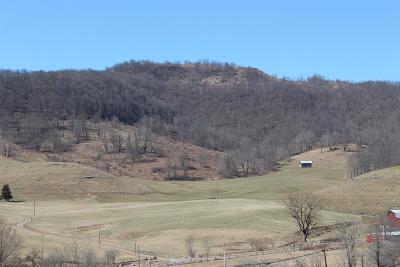 Snowshoe WV Farm For Sale: $1,275,000