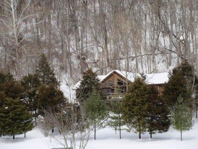 Greenbrier County Single Family Home For Sale: 16 Jonahs Landing