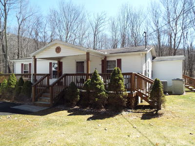 Greenbrier County Mobile Home For Sale: 377 Sheppard
