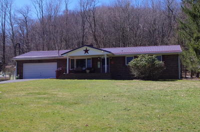 Greenbrier County Single Family Home For Sale: 235 Lab Ln