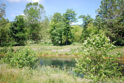 Greenbrier County Residential Lots & Land For Sale: 556 Old Stage Road