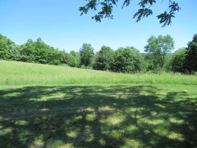 Jumping Branch WV Farm For Sale: $423,000