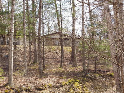 Greenbrier County Mobile Home For Sale: 286 Grifs Mountain Trail