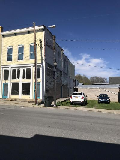 Greenbrier County Commercial For Sale: 214 Frankford Rd