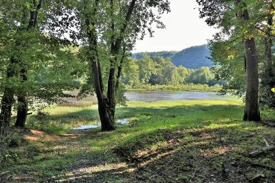 Residential Lots & Land For Sale: 555 River Trail Lane