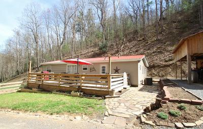 White Sulphur Springs Single Family Home For Sale: 645 Brookside Trail