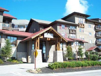 Snowshoe WV Condo/Townhouse For Sale: $154,500