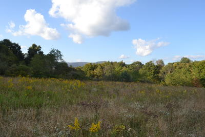 Williamsburg WV Residential Lots & Land For Sale: $140,000