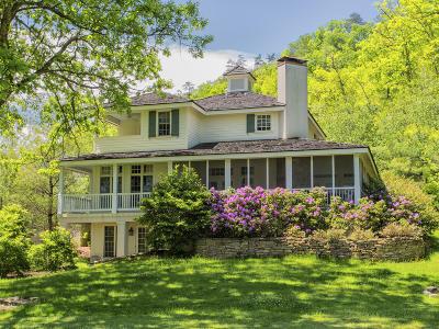 White Sulphur Springs Single Family Home For Sale: 580 Village Run Road