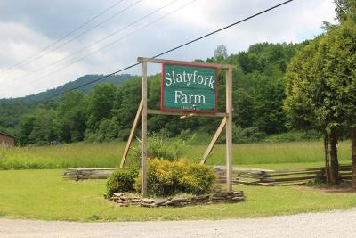 Slatyfork WV Residential Lots & Land For Sale: $18,900