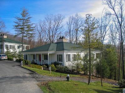 White Sulphur Springs Single Family Home For Sale: 320 Copeland Hill Dr.