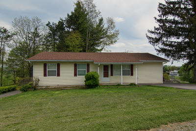 Lewisburg Single Family Home For Sale: 246 Twin Maple Ln