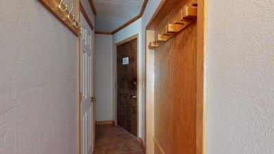 Snowshoe WV Condo/Townhouse For Sale: $49,000