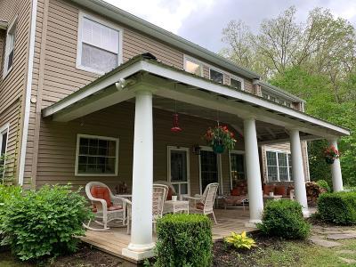 White Sulphur Springs Single Family Home For Sale: 320 Grass Run Rd