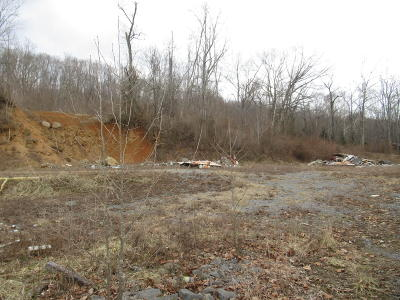 Alderson WV Residential Lots & Land For Sale: $179,900