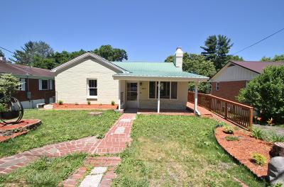 Lewisburg Single Family Home For Sale: 410 Frazier St