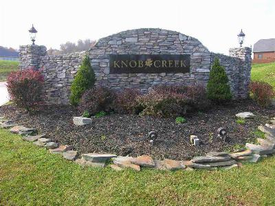 Barboursville WV Residential Lots & Land For Sale: $189,900