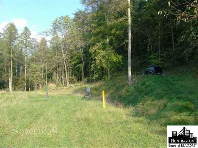 78 acres in Branchland for $78,000