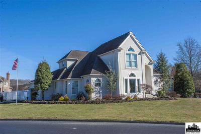 Proctorville Single Family Home For Sale: 9604 County Road 107