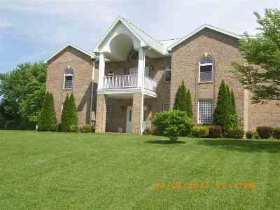 Proctorville Single Family Home For Sale: 227 Pvt. Dr. 12638
