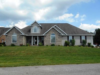 Chesapeake Single Family Home For Sale: 125 Private Drive 633 County Road 124