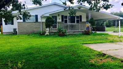 Proctorville Single Family Home For Sale: 9408 County Road 107