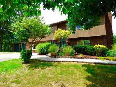 Ironton Single Family Home For Sale: 134 Private Drive 1813 County Road 5
