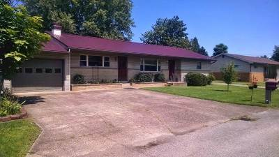 South Point Single Family Home For Sale: 73 Twp. Rd. 1340