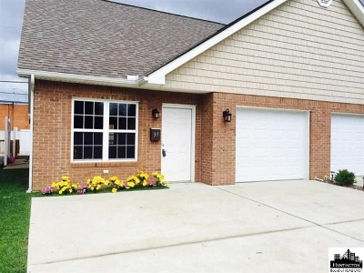 Chesapeake Single Family Home For Sale: 35 Platinum Drive