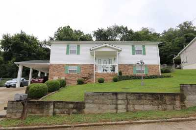 South Point Single Family Home For Sale: 202 Elizabeth Way