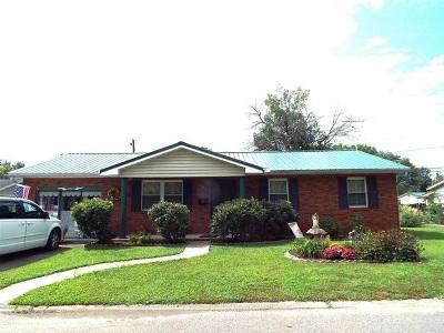 Ironton Single Family Home For Sale: 1738 Waldo Drive