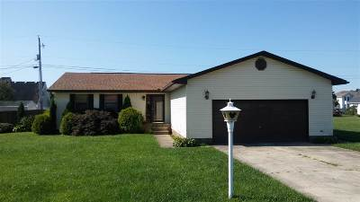 Proctorville Single Family Home For Sale: 315 Highland Dr.