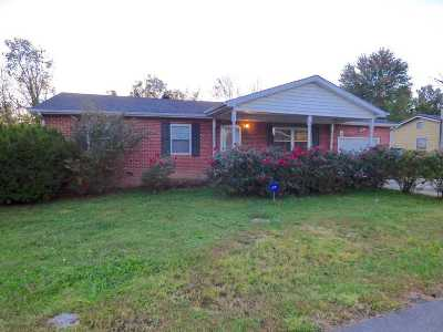 South Point Single Family Home For Sale: 110 Sharon Court