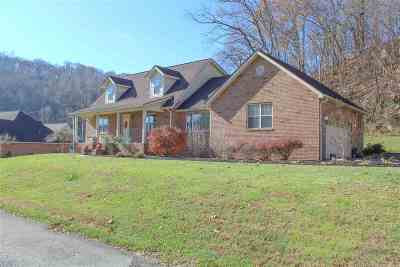 South Point Single Family Home For Sale: 105 Private Drive 2265 County Rd 144