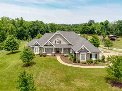 Barboursville WV Single Family Home For Sale: $1,075,000