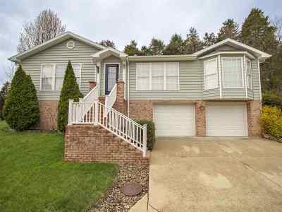 Barboursville Single Family Home For Sale: 10 Cedarwood Lane