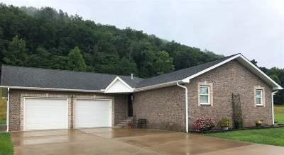 Buffalo Single Family Home For Sale: 251 Frazier Lane