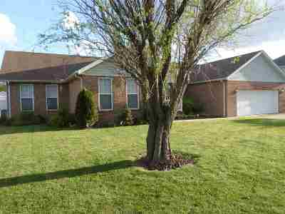 Proctorville Single Family Home For Sale: 395 Township Rd. 1533