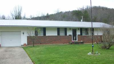 Proctorville Single Family Home For Sale: 309 County Road 66