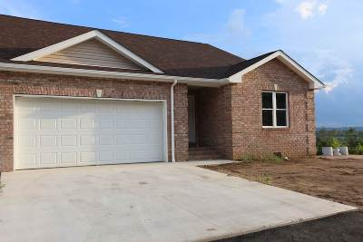Proctorville Single Family Home For Sale: 429 Private Road 574