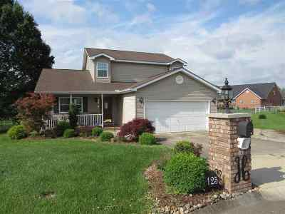 Scott Depot Single Family Home For Sale: 125 Moorefield Place