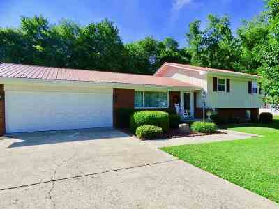 Ironton Single Family Home For Sale: 59 Mi Lew Drive