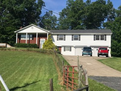 Ironton Single Family Home For Sale: 294 Private Rd 726